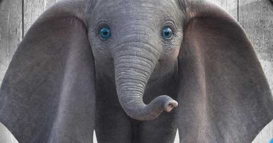 Dumbo-2019-Character-Posters